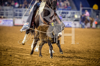 Rodeo Houston March 5 HR-1568
