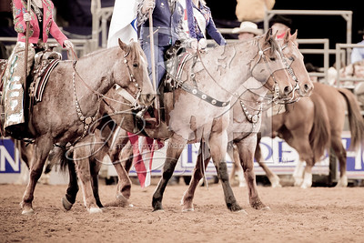 Rodeo Houston March 7 hr-4583