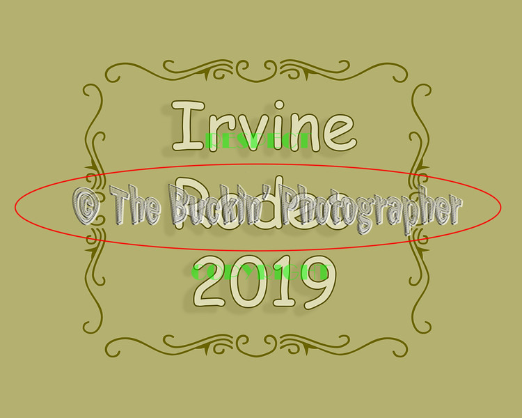 Irvine2019