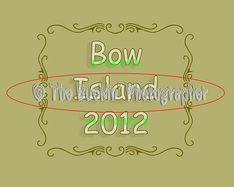 bowisland2012