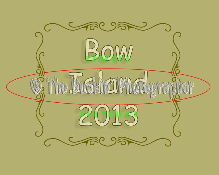 bowisland2013