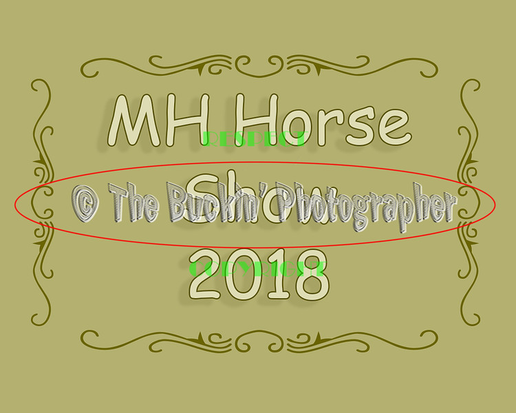 MHHS 2018