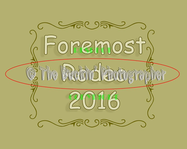 Foremost2016