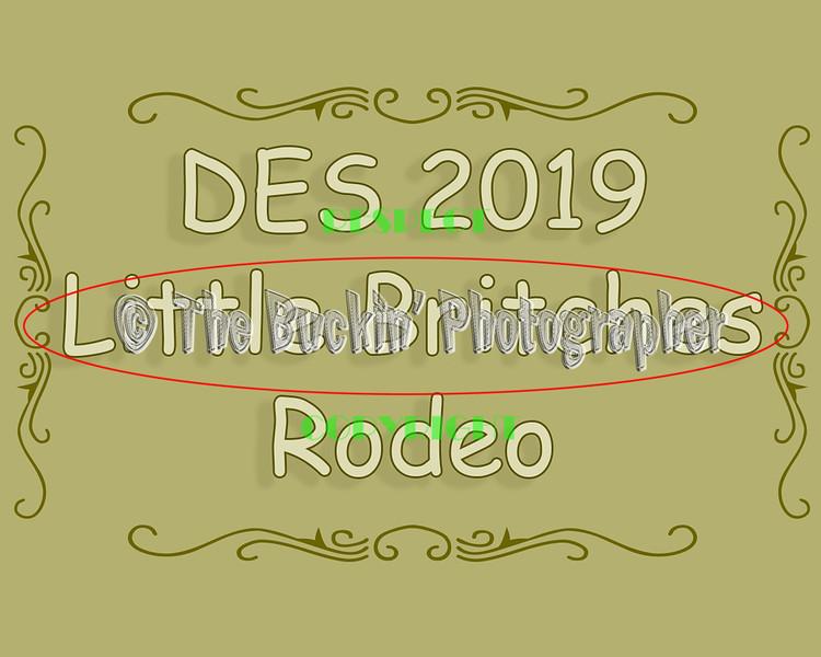 DES2019LittleBritchesRodeo