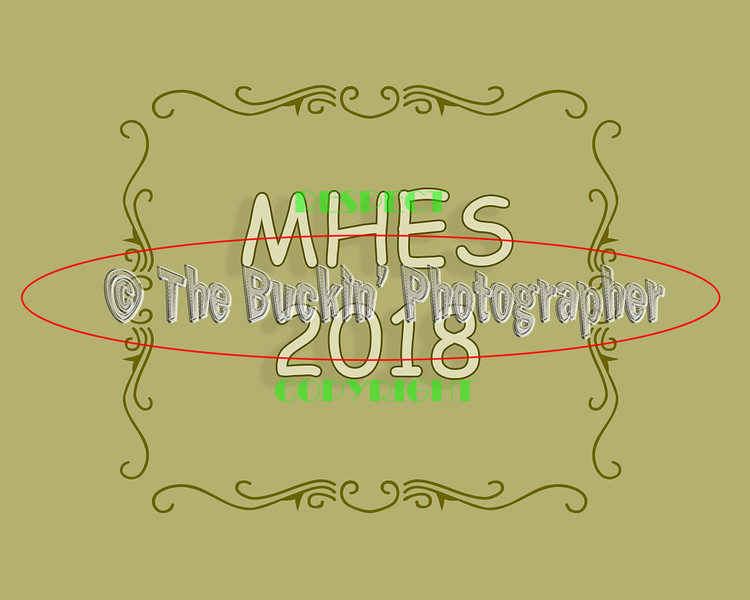 MHES2018