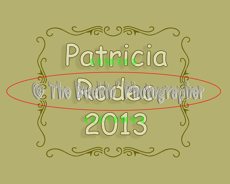 Patricia2013