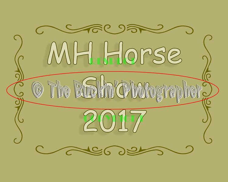 MHHS 2017