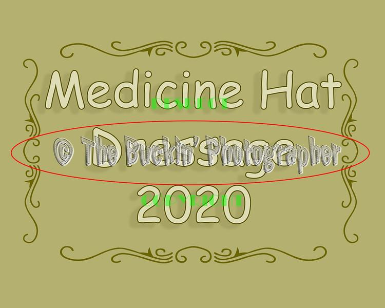 MH Dressage 2020