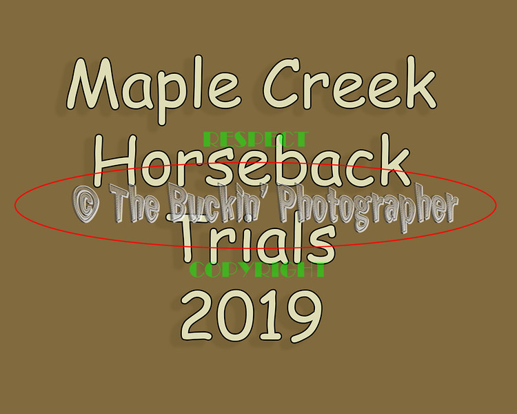 Maple Creek Horseback Dog Trials 2019