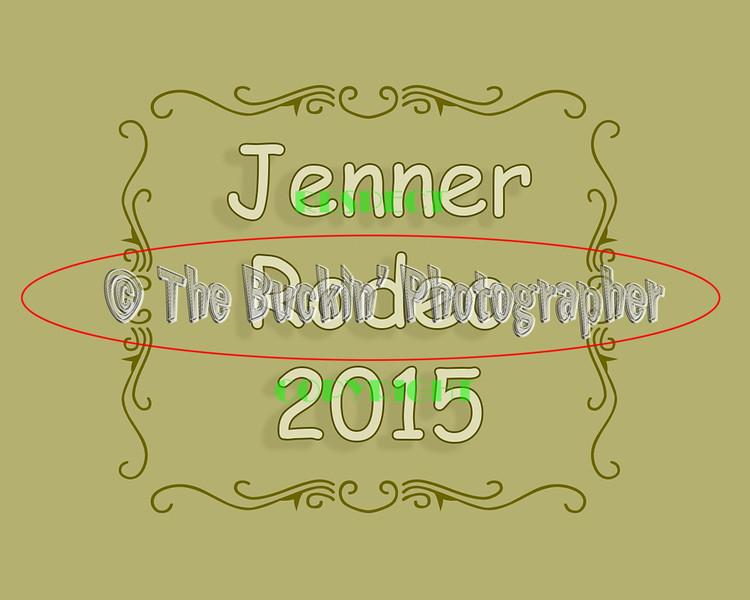 Jenner2015