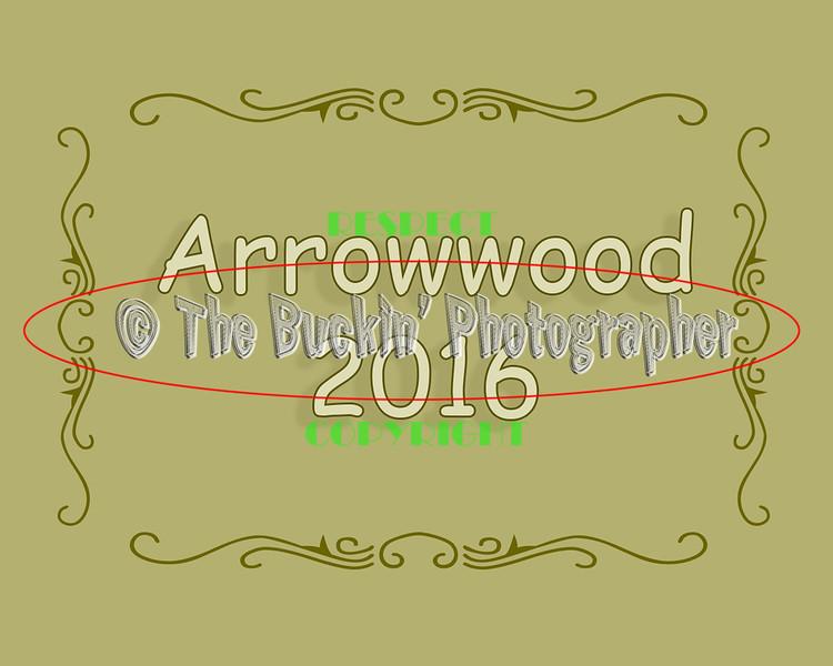 Arrowwood2016