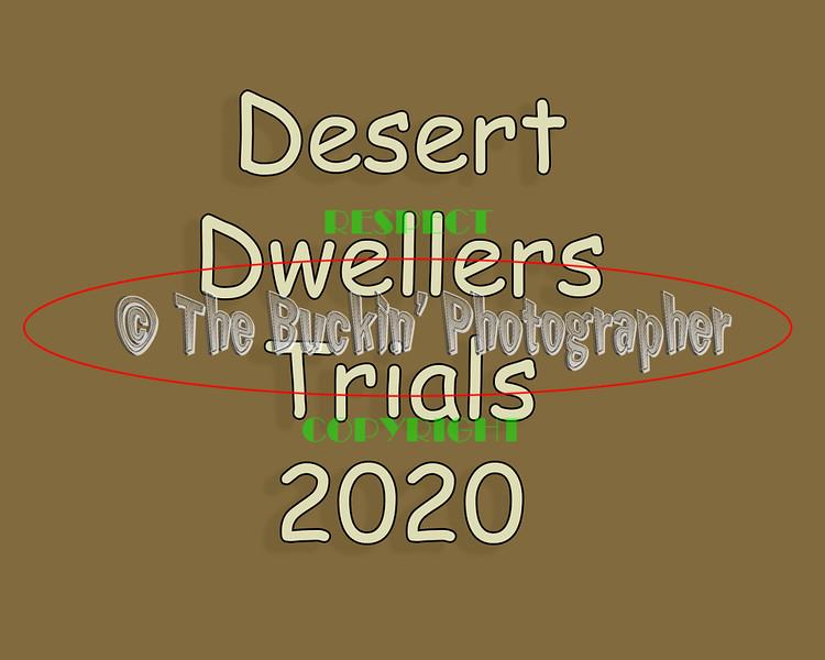 Desert Dwellers Cow Dog Trials 2020