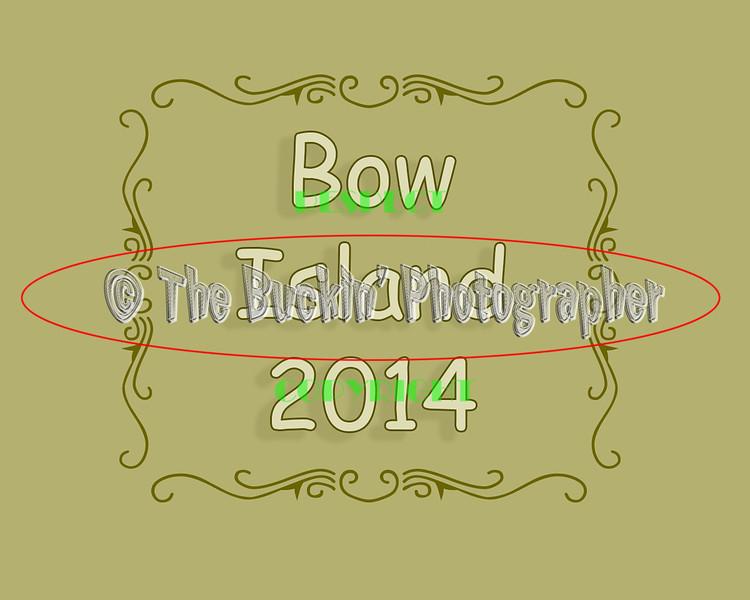 bowisland2014
