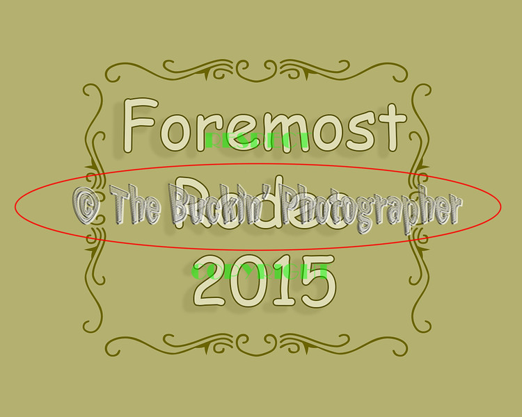 Foremost2015