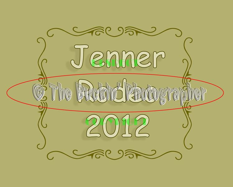 Jenner2012