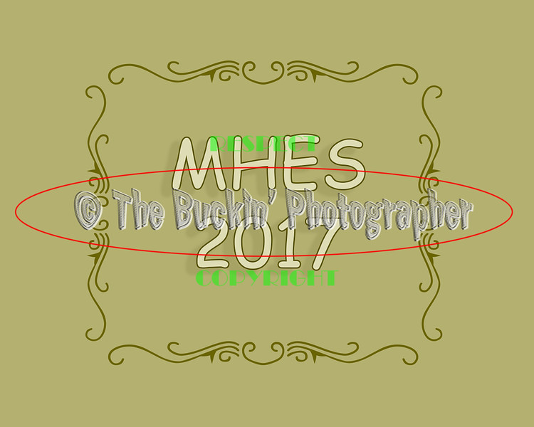 MHES2017