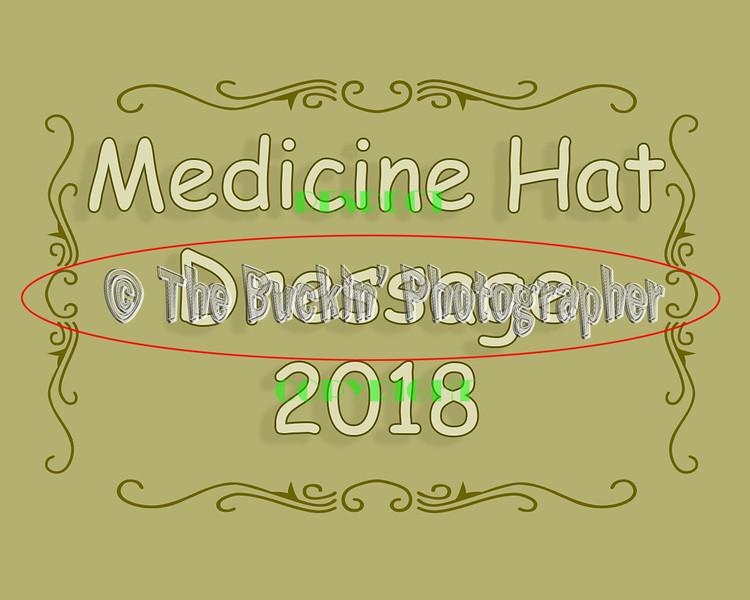 MH Dressage 2018