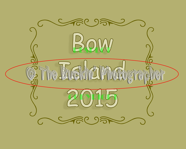 bowisland2015