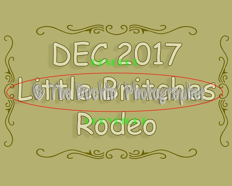 DEC2017LittleBritchesRodeo
