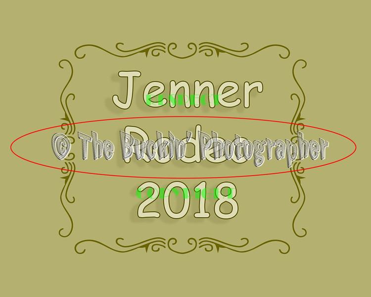 Jenner2018