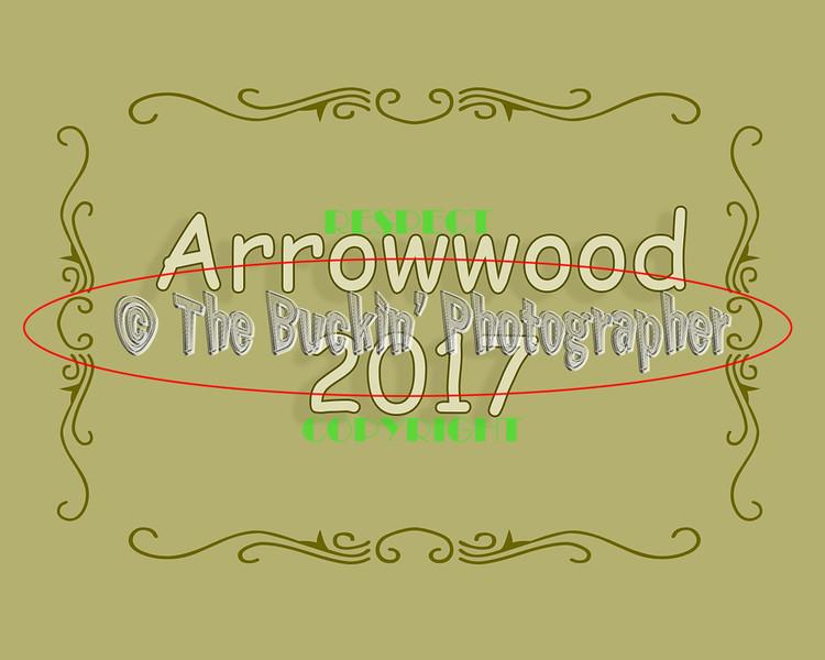 Arrowwood2017