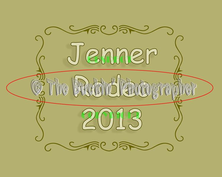 Jenner2013
