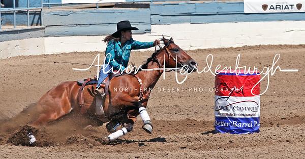 Rodeo and Barrel Racing ~ 2009