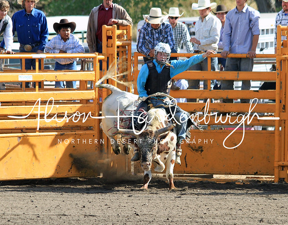 Bull Riding ~ Sunday
