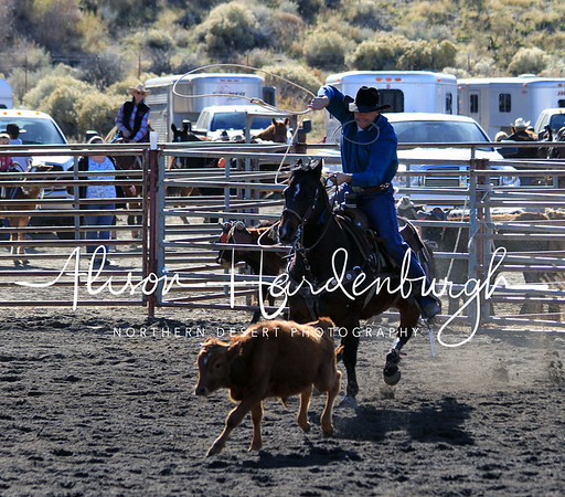 Calf Roping ~ Sunday