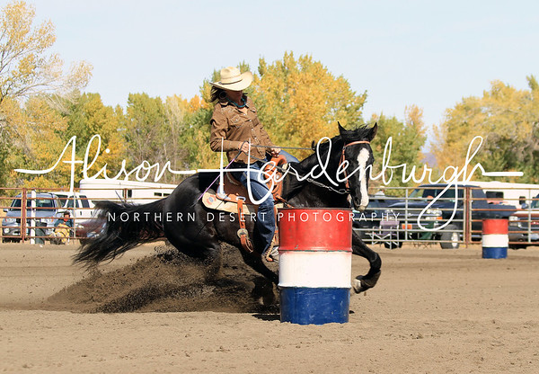 Ladies Barrel Racing ~ Sunday