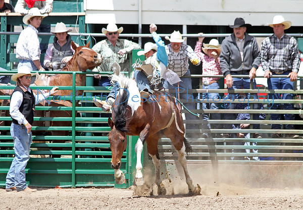 Bareback Bronc ~ Saturday