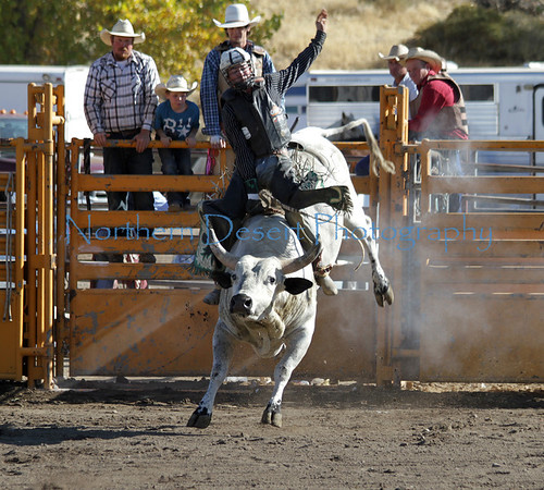 Rodeo and Barrel Racing ~ 2011