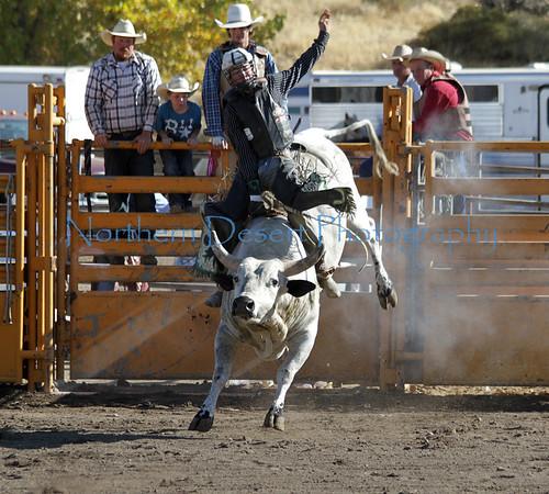 Rodeo and Barrel Racing ~ 2011