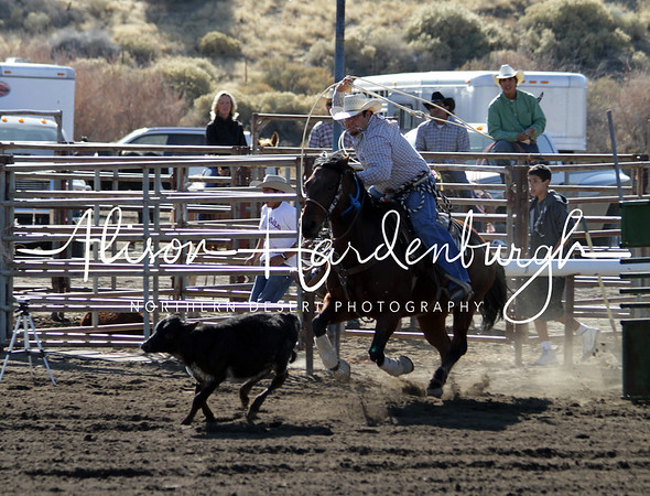 Calf Roping ~ Saturday