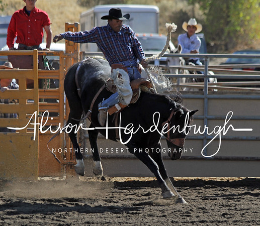 Saddle Bronc ~ Saturday