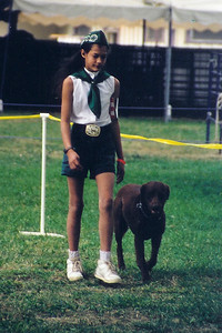 1998 Diamantina - dog show