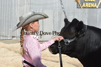 North Central Washington District Fair in Waterville, WA - August 2016