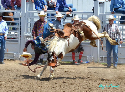 HS Rodeo