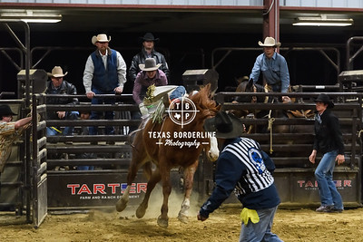 February 02, 2018-2-2-2018 Sabine River Ford Pro-Rodeo-ND5_7998-