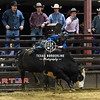 February 02, 2018-2-2-2018 Sabine River Ford Pro-Rodeo-ND5_8828-