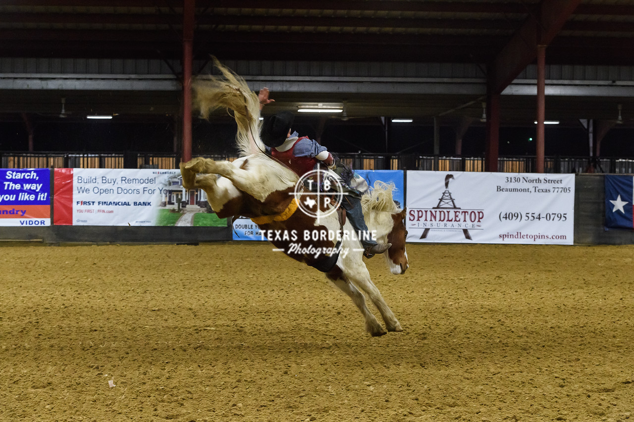 February 03, 2018-T2 Arena 'Sabine River Ford Pro-Rodeo-ND5_9117-