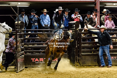 February 03, 2018-T2 Arena 'Sabine River Ford Pro-Rodeo-ND5_8993-