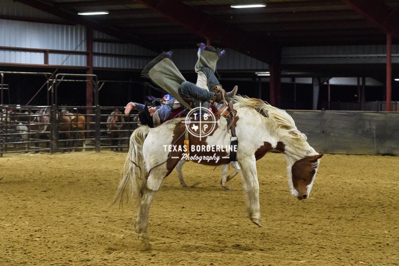 February 03, 2018-T2 Arena 'Sabine River Ford Pro-Rodeo-ND5_9109-
