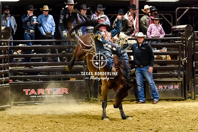February 03, 2018-T2 Arena 'Sabine River Ford Pro-Rodeo-ND5_8995-