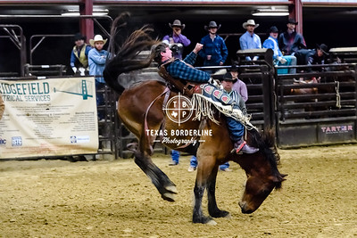 February 03, 2018-T2 Arena 'Sabine River Ford Pro-Rodeo-ND5_8999-