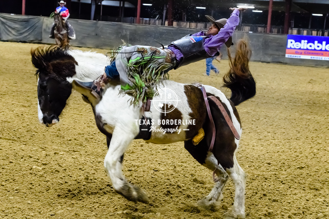 February 03, 2018-T2 Arena 'Sabine River Ford Pro-Rodeo-ND5_9069-
