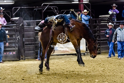 February 03, 2018-T2 Arena 'Sabine River Ford Pro-Rodeo-ND5_8998-
