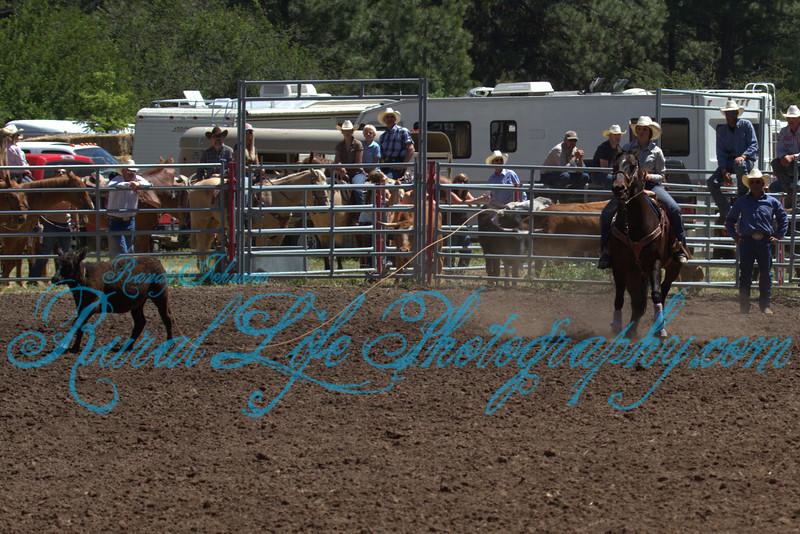 2013 Alder Creek ( Breakaway )