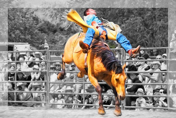 2015 Annual Montgomery Benefit Rodeo