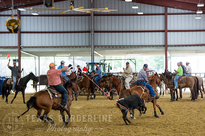May 15, 2016-T2 Arena 'Team Roping'-TBP_0221-